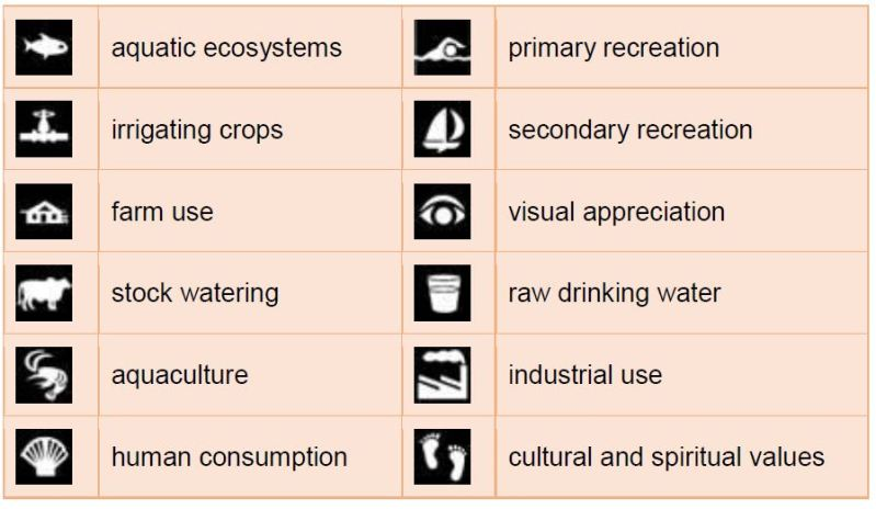 Environmental values water
